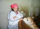Julia con il vitellino Leon